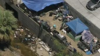 Homeless Seen Sleeping in Piles of Trash Near Train Tracks