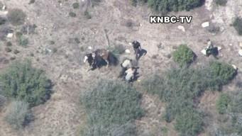 Raw Video: Deputies Beat Man After Horse Pursuit