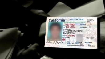 New Law to Protect Personal Info From Immigration Agencies