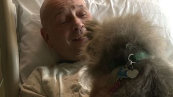 Tornado Victim Reunited With Dogs