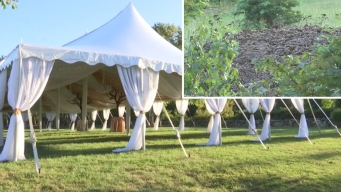 Huge Pile of Manure Causes Stink at Wedding Spot
