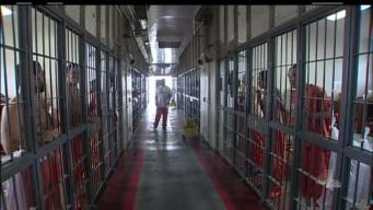 NewsConference: Reforming the Bail System