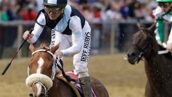 Point of Honor Wins Black-Eyed Susan