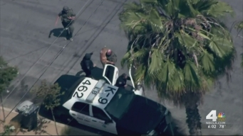 Police Dog Slain in Long Beach Standoff