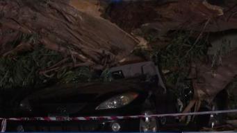 Powerful Santa Ana Winds Wrecks Areas of Southern California