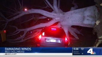 Powerful Winds Wreak Havoc in SoCal
