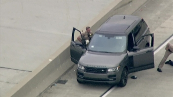Pup Emerges From Stolen Range Rover in Pursuit Standoff