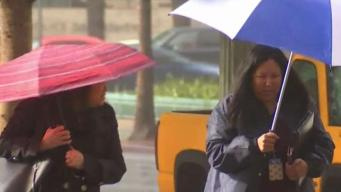 Rain and Even Hail Pours Down on Los Angeles Residents