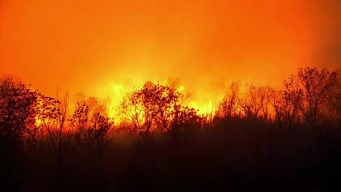 Firefighters Working to Contain 5,000-Acre Rye Fire