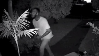 Home Security Camera Captures Man Brutally Beating Woman