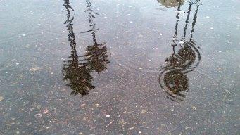 San DIego Activates Storm Patrols Ahead of Heavy Rain