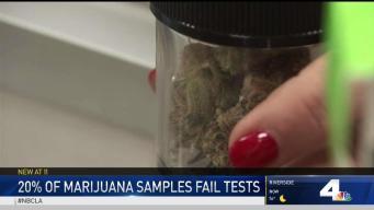 Some Marijuana Samples Fail Tests