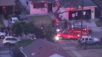 3 Killed, Others Wounded in Pair of Bloody South LA Shootings