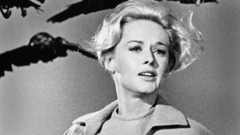 "Tippi Hedren Talks ""The Birds"""
