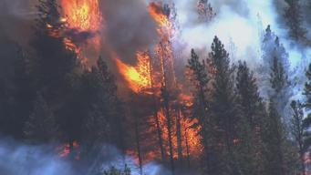Wildfires Destroy Five Homes in Placer County