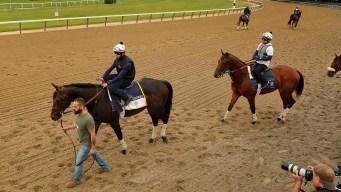 Colt Named for Pats' Gronk Set for Belmont