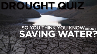QUIZ: How Water Smart Are You?
