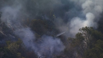 45-Acre Brush Fire in the Eagle Rock Area 100% Contained