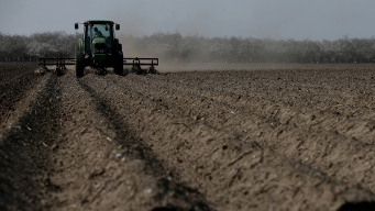 Calif. Farmers Reap Record Sales in Record Drought