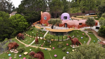 'Flintstones House' Owner Files Suit Citing Discrimination