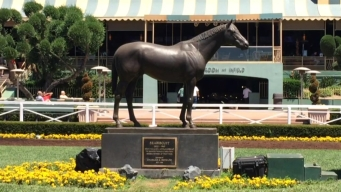 The LA You May Not Know: Santa Anita Park