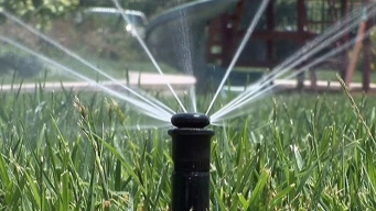 CA Loses Ground in Drought Water-Saving