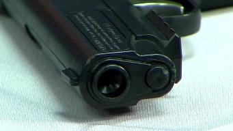 Man Issued San Diego's 1st Gun Violence Restraining Order