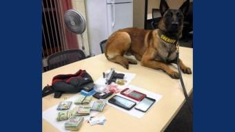 Sheriff's K-9 Unit Makes Major Drug Bust in Napa County