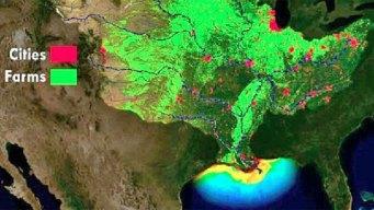 Did Hurricane Barry Prevent a Near-Record 'Dead Zone'?
