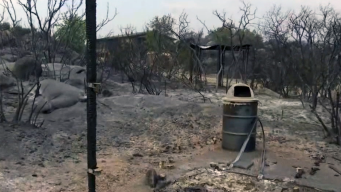 Ecological Reserve and Hiking Trails Blackened by Tenaja Fire