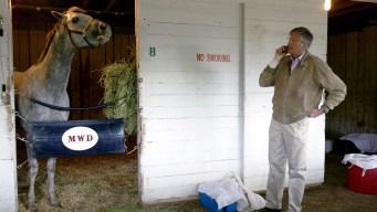 Breeding Is a Billion-Dollar Business