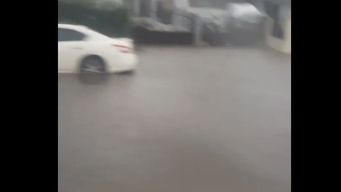 Sun Valley Flooding