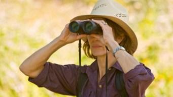 Go 'Virtual Bird Watching' at an OC Paradise