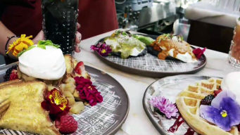 The Food is Hot, and the Servers are Fire in WeHo