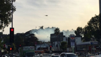 Brush Fire in Sherman Oaks Quickly Doused