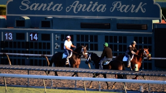Breeders' Cup Returning to Santa Anita in 2014