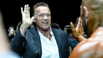 Schwarzenegger Helping 102-Year-Old Woman Facing Eviction