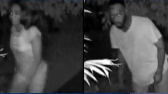 Woman Brutally Attacked at Stranger's Doorstep