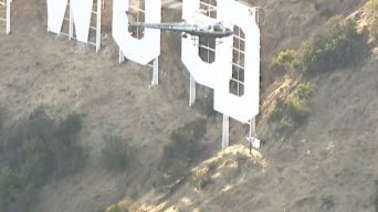 Man Taken Into Custody After Climbing Hollywood Sign