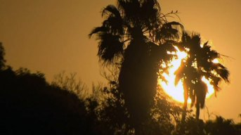 AM Forecast: Another Week of Sizzling Heat