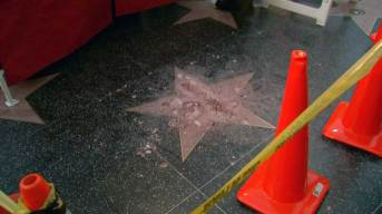 Vandal With Ax Breaks Trump's Walk of Fame Star to Pieces