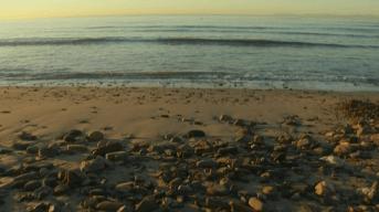 Three Southern California Beaches Make the 'Beach Bummer' List
