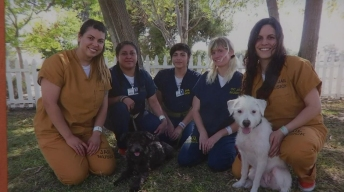 Inmates Train Rescued Dogs to Help Those in Need