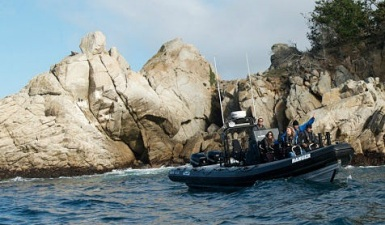 Taking a Fast Raft on Monterey Bay