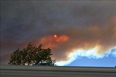 Viewer Images: Willimans Fire in Angeles National Forest