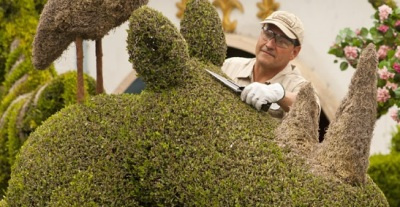 A Disneyland Tour for Greenery Buffs