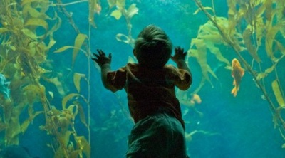 San Diego October: Free Admission for Kids at 30+ Museums