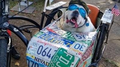 Arrive by Bark -- er, Bike -- at SB Earth Day