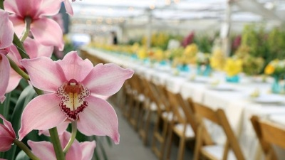 Carpinteria Abloom: Field to Vase Dinner