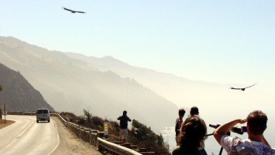 California Condor Viewing Tour